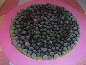 Можно увеличить количество витамина С в ягоде черная смородина в 5 раз!
