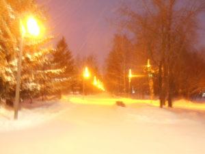 Проходим к березам. Вот оно страшное зимнее утро. Еще никто тут не ходит. Идем по дорожке в буран. Хорошо, что в парке много фонарей.